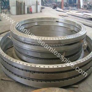 Wholesale Asme b16.5 grade2 grade7 titanium Marine flange from china suppliers