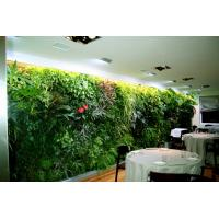 Hot Fake Grass Wall Panel Plastic Living Plants Wall For Interior Privacy Hedge Screen Of Cia