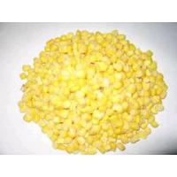Wholesale Frozen Sweet Corn,Frozen Vegetables from china suppliers