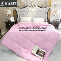 High Quality Wholesale Four Seasons Hotel Down /Microfiber Bed Comforter