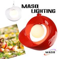 Indoor Pendant Apple Type Resin Lamp Energy Save Power LED Replacable Glass Cover