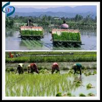 Wholesale rice transplanter for seedling planting from china suppliers