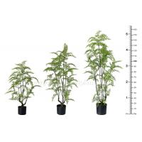 OEM ODM Plastic Fern Plants 100% Botanically Accurate Structure Waterproof