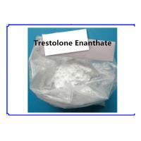 China Trestolone Enanthate Muscle Building Strong Effects USP Standard 99% Assay on sale