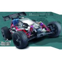 China 1: 10 Nitro Power RC Buggy on sale