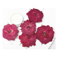 Wholesale True Rose Pressed Diy Dried Flowers For Pendant Necklace Jewelry Ornaments Material from china suppliers