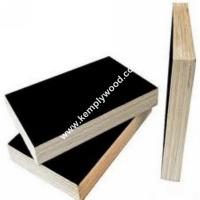 China Poplar core 18mm film faced plywood, black film faced plywood, black shuttering plywood wholesale