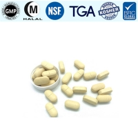 Wholesale White Kidney Bean Dietary Fiber GMP Herbal Supplement Tablets from china suppliers