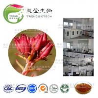 Quality hot sale Rhodiola Rosea Extract Salidroside Powdere/Best price Rhodiola Rosea for sale