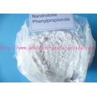 Medical Nandrolone Steroid Nandrolone Phenylpropionate/ Npp For Bodybuilder 62-90-8