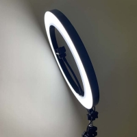 Wholesale SMD2835 20W 14inch Dimmable LED Ring Light from china suppliers