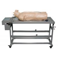 China Comprehensive Puncture Clinical Simulation Various Postions for Hospitals Training wholesale