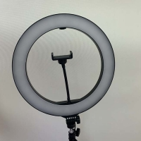 Wholesale Makeup 36W DC15V 19 Inch Dimmable LED Ring Light from china suppliers