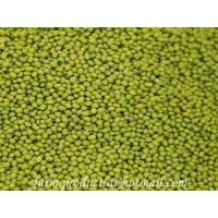 Wholesale Green Mung Bean, Chinese Green Mung Bean Supplier from china suppliers