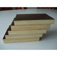 Film faced plywood cheap price construction playwood