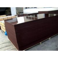 Wholesale construction plywood from china suppliers