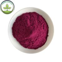 Wholesale Antioxidants Food Grade Bilberry Fruit Powder With Best Price from china suppliers