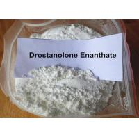 Buy cheap Gym Training Muscle Building Steroids Injectable Drostanolone Enanthate 100MG/ML from wholesalers
