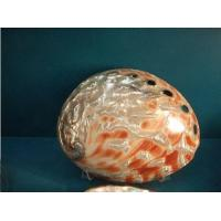 Wholesale Polished Shell from china suppliers