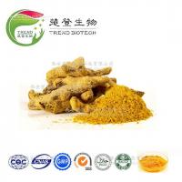Wholesale High Quality Ginger Extract Ginger Root Extract/Gingerols 5% 6% 10% 15% HPLC/UV from china suppliers