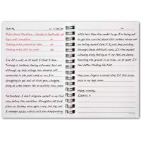 Wholesale New Design 2013 Daily Agenda from china suppliers