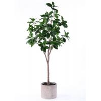 7 Ft Artificial Ficus Tree Simulation Branches Botanically Accurate For Restaurant