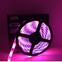Wholesale 2A 36W 5m IP65 12V LED Strip Lights Waterproof from china suppliers