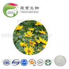 Buy cheap Natural prebiotic supplement jerusalem artichoke powder inulin 90% 95% from wholesalers