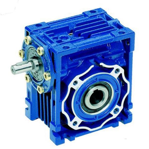 Rv75 rv90 rv110 ratio 10 15 20 gear electric motor for Hollow shaft gear motor