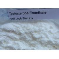 Testosterone Enanthate Raw Powders Anabolic 315-37-7 Male Sex Hormone