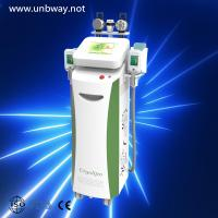 Wholesale Low Price Cooling RF Weight Loss Body Sculpture Fat Cell Reduction Cryo Freeze Fat Slimming Salon Beauty Equipment from china suppliers