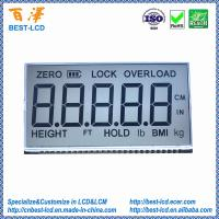 Custom 5 digits 7 segment TN LCD display with white LED backlight For Adult Physician Electronic Scale