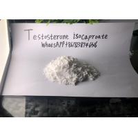 Wholesale Testosterone Isocaproate Legal Injectable Steroids Drug Assist from china suppliers