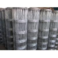 Wholesale Hot sale High tensil Galvanized deer fencing cattle fence horse fence from china suppliers