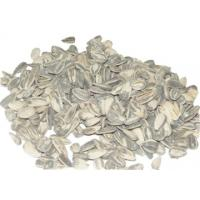 large /long type sunflower seed American type 118,5135,6009,5009