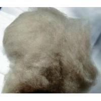 Wholesale 100% Dehaired Brown Cashmere Fiber from china suppliers