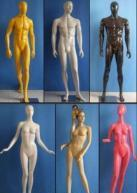 Fashion Male & Female Mannequins