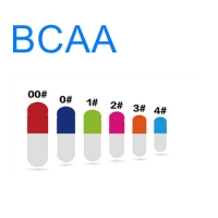Wholesale OEM Hard Bodybuilding Supplements 500mg BCAA Capsule from china suppliers