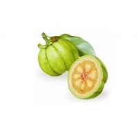 Wholesale CAS No 6205-14-7 50.0% HCA Garcinia Cambogia Extract from china suppliers
