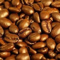 Wholesale Mandheling Coffee, Comes in Dark Brown Roasted from china suppliers