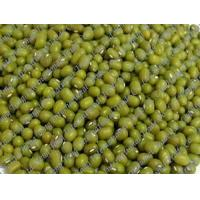 Wholesale Green Mung Bean from china suppliers