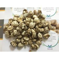 Wholesale Factory Price Premium NEW CROP Dried White Flower Mushroom Whole 3-4CM within 1Cm Stem from china suppliers