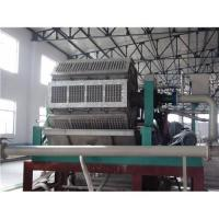 China Paper Pulp Moulding Egg Tray Machine on sale