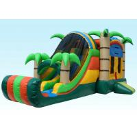 Wholesale Gaint Inflatable Bouncer Combo , Tropical Inflatable Water Castle from china suppliers