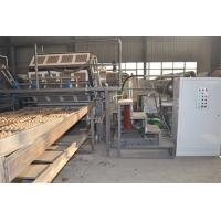 Wholesale Paper Egg Tray Manufacturing Machine / Pulp Molding Machine 2 Years Warranty from china suppliers