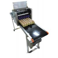 Eggs Continuous Inkjet Printer With Date Automatically Updated Programme