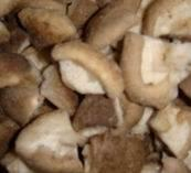 Wholesale Frozen Oyster Mushroom/ Pleurotes/ Shiitake Mushroom from china suppliers