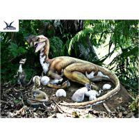 Wholesale Outdoor Moving Velociraptor Life Size Model For Garden Display / Festival Exhibition from china suppliers