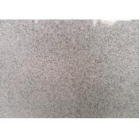 Wholesale Indoor / Outdoor Granite Tiles , Light Grey Hard Honed Granite Floor Tile from china suppliers