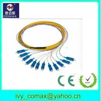 Wholesale SC 12core singlemode fiber optic pigtail from china suppliers